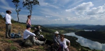 Conservation Biology and Practice in Brazil's Atlantic Forest