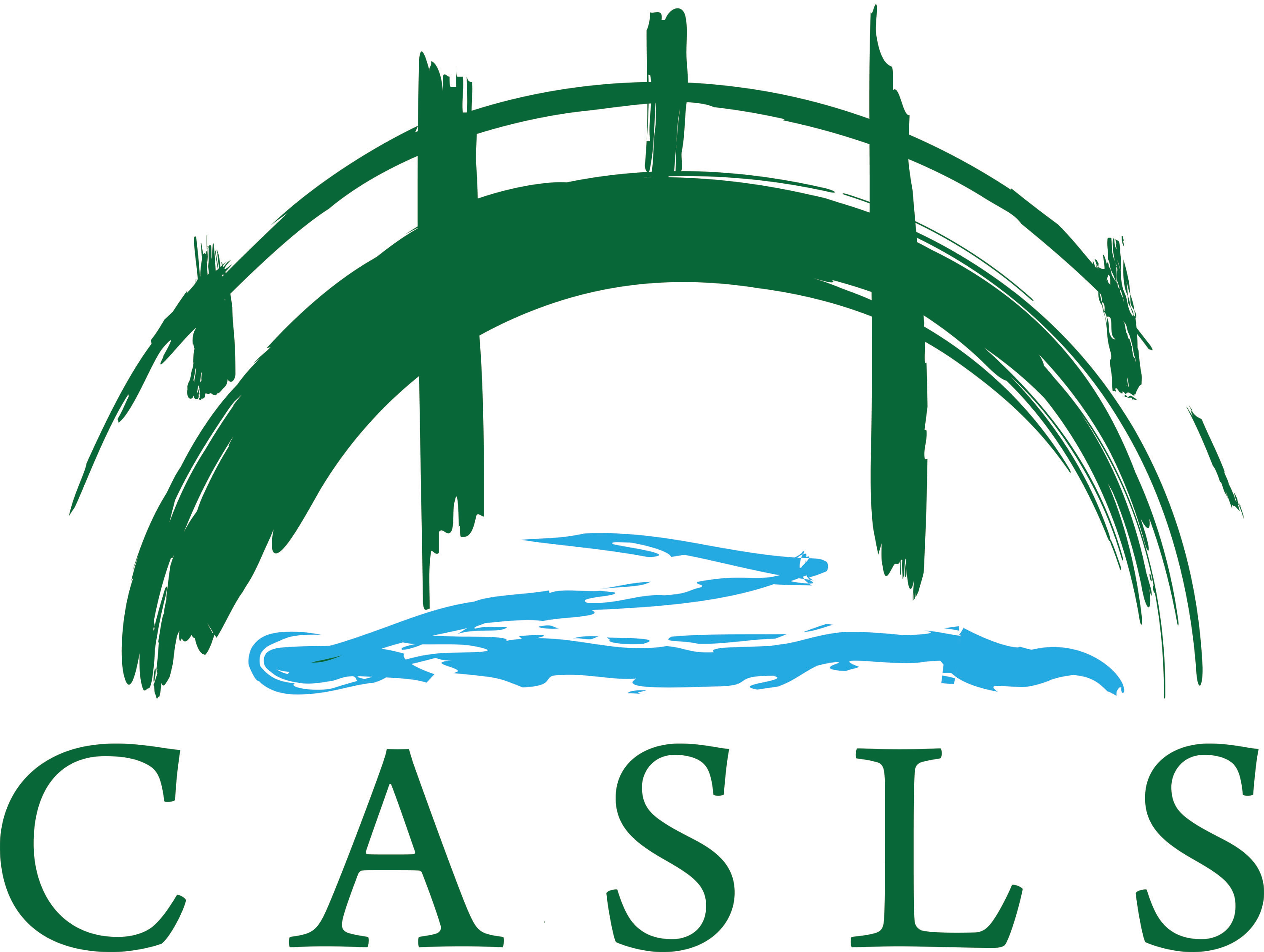 Logo for the University of Oregon Center for Applied Second Language Studies. Features the acronym CASLS in forest green block letters beneath a stylized green bridge with a blue river running underneath it. The image appears to have been painted with a brush.