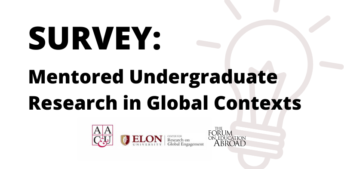 Survey: Mentored Undergraduate Research in Global Contexts